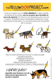 Lenguaje canino, perro, muerde, gruñe