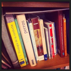 libros-perros-educacion canina- literatura- recomendaciones libros perros